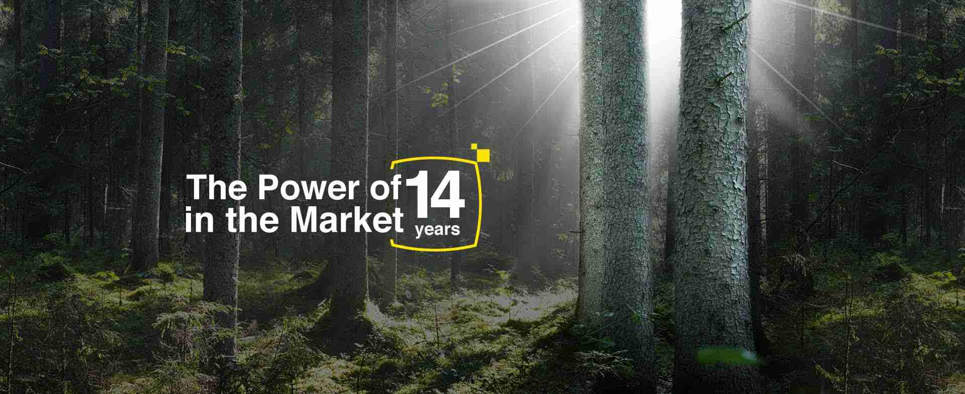 The power fo 11 years in the market